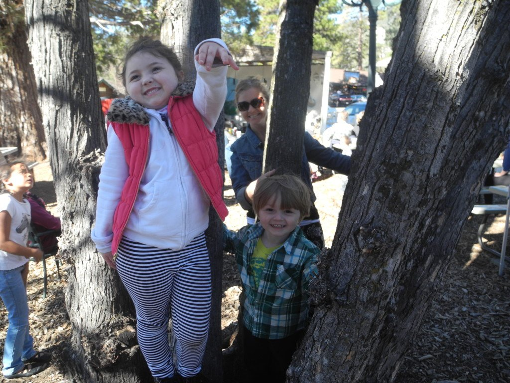 Playing in tree at Jo'An's in Idyllwild
