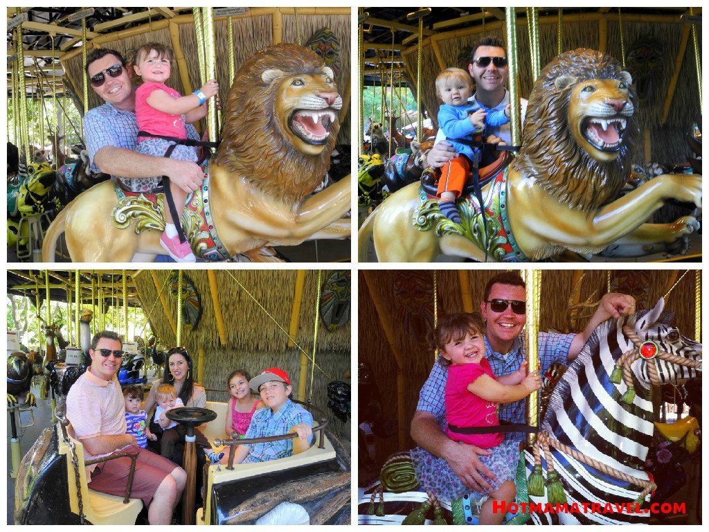 MERRY GO ROUND AT Safari Park