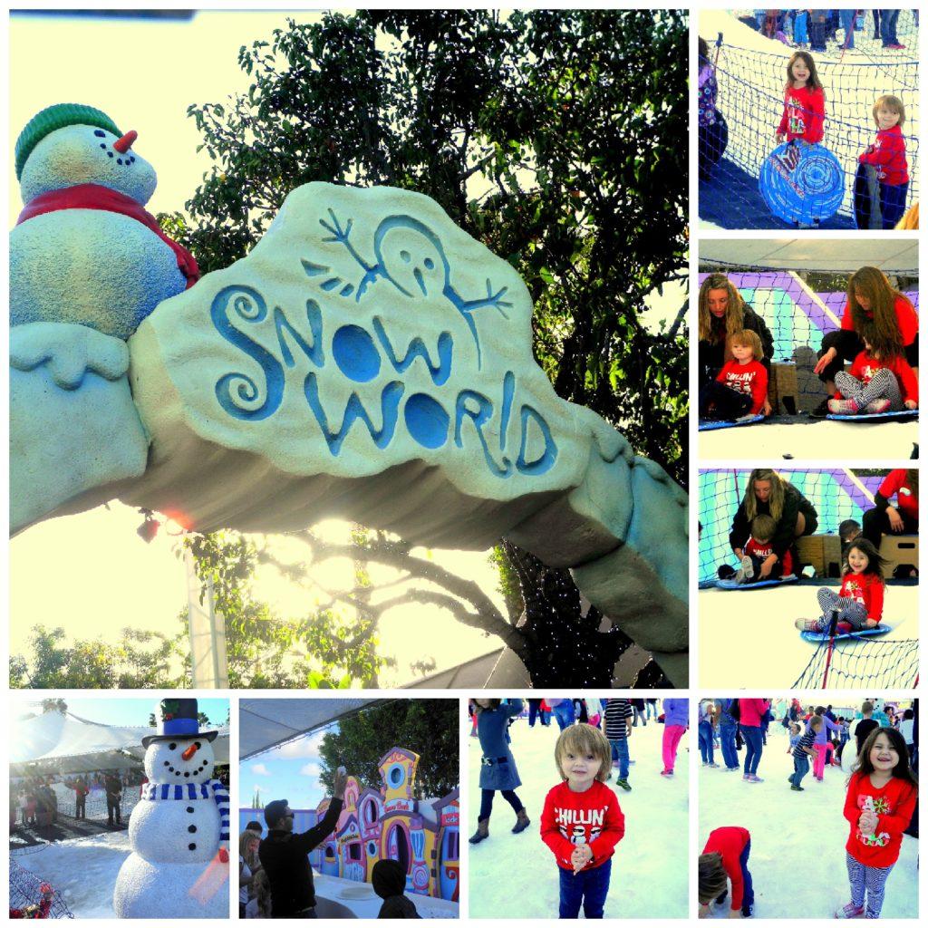 SeaWorld Christmas with kids