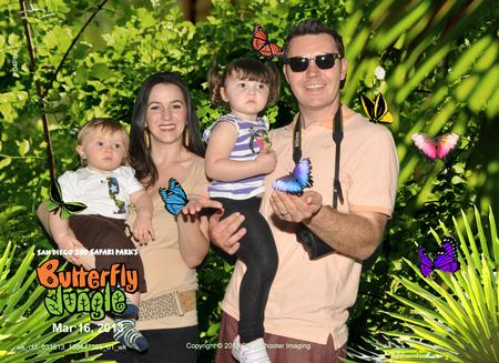 Butterfly Jungle at Safari Park