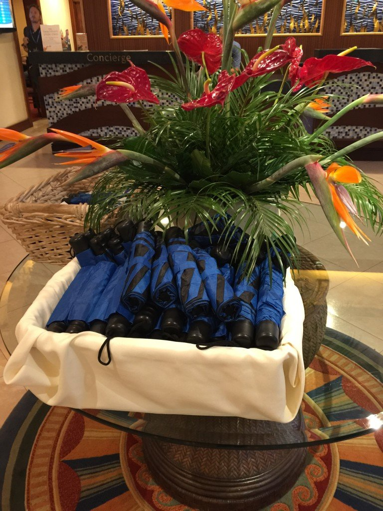 Complementary Umbrellas at Tradewinds Resort