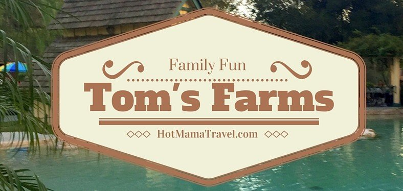 Toms Farms with Kids