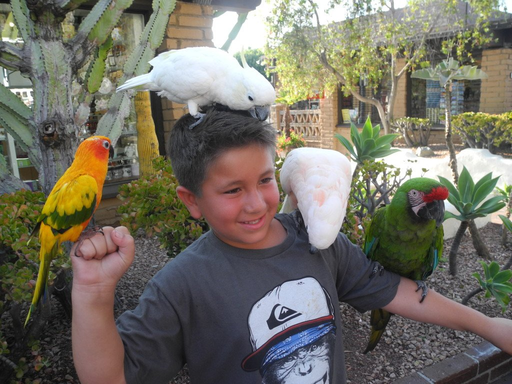 Seaport Village Bird holding with Kids