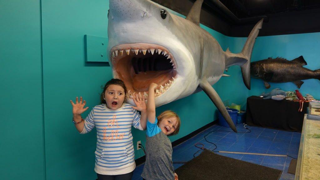 Cute kids with shark in Balboa ExplorOcean
