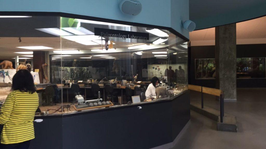 La Brea Tar Pits Fossil lab