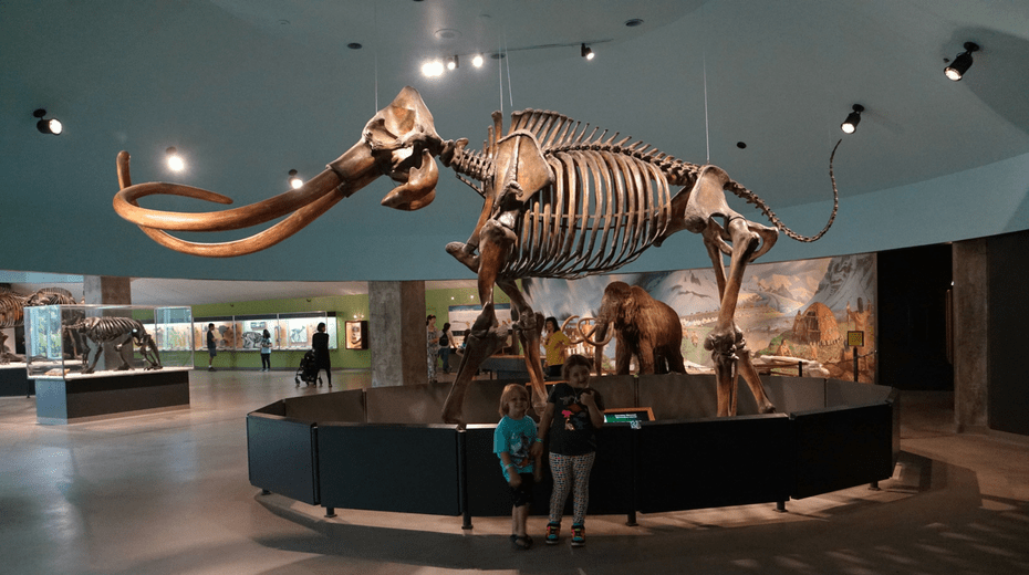 Guide to Visit La Brea Tar Pits with Kids