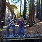 Idyllwild fireside inn cabins review