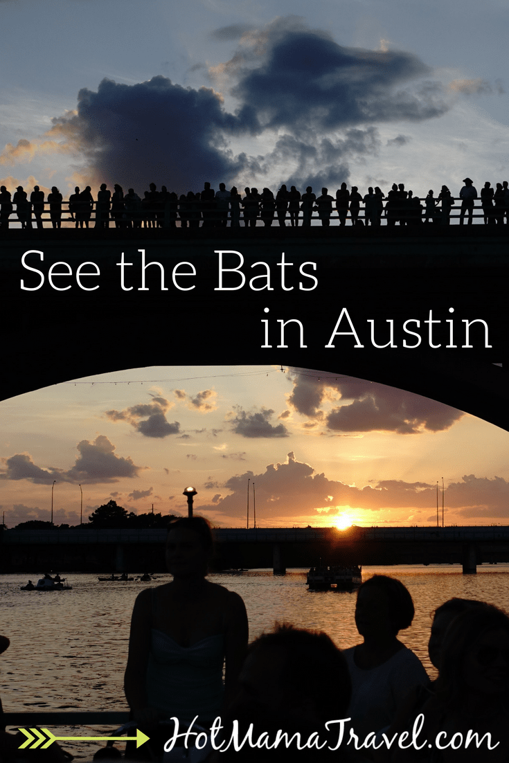 Austin Bat Cruise: A must see when visiting Austin, Texas with kids.