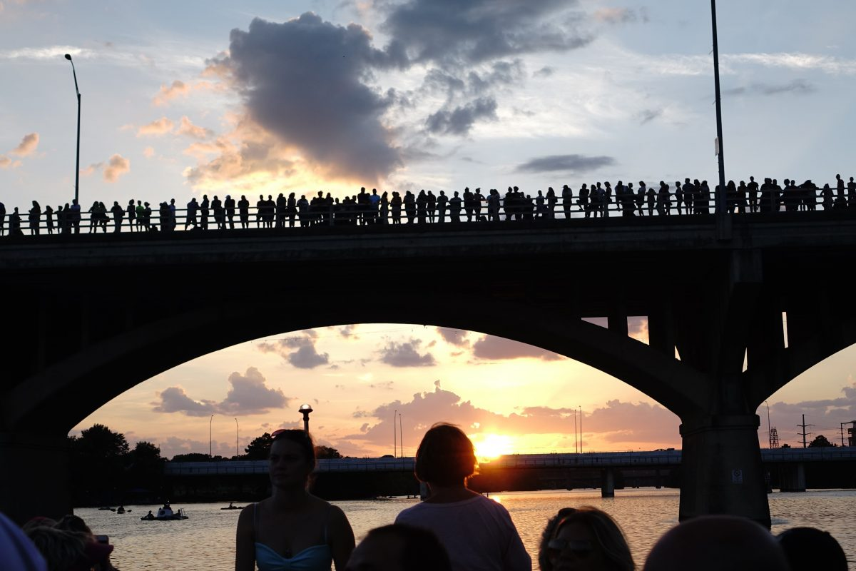 Austin Bats come out at sunset in Austin Texas