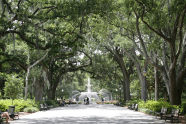 Forsythe Park Fountain Spanish Moss Savannah GA