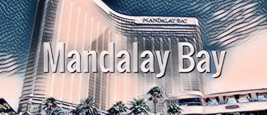 Family Hotel Mandalay Bay Las Vegas