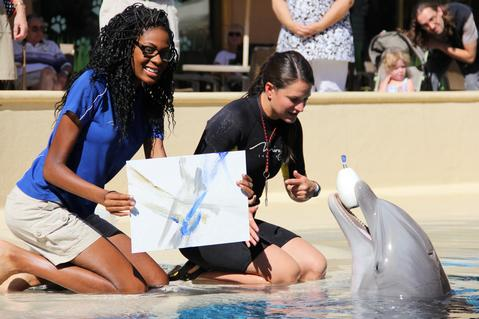 Painting with dolphins at Mirage Las Vegas