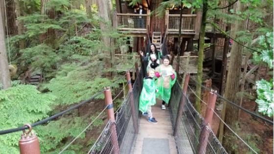 Tree tops adventure at Capilano Park Vancouver