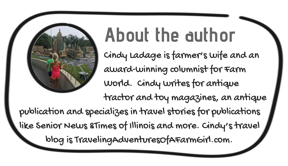 About the Author Cindy Ladage