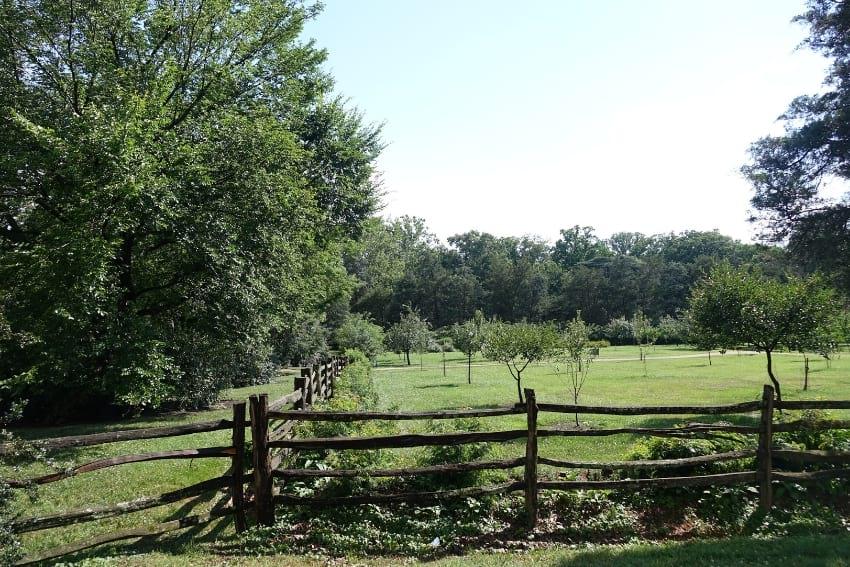 Mount Vernon Green gardens